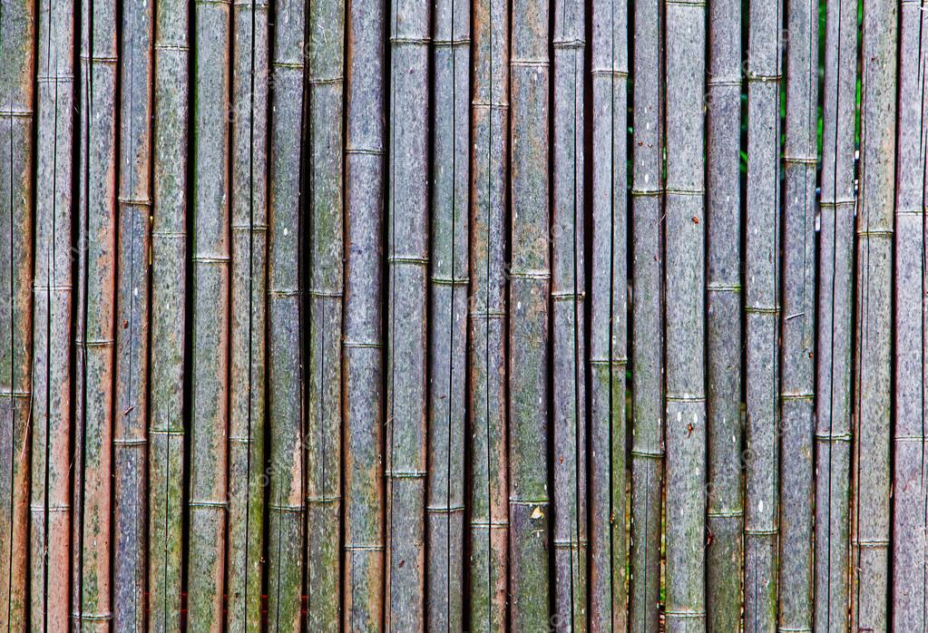 오래 되 고 마른 대나무 울타리의 배경 — 스톡 사진 © wlad74 #53193251