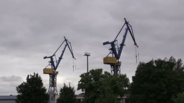 Harbor cranes against  sky in Hamburg — Stock Video