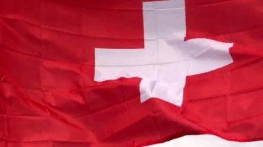 Swiss flag in wind in the sunlight — Stock Video