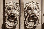 Door knobs two lions protecting the entrance — Stock Photo