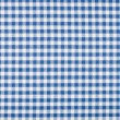 Blue and white checkered tablecloth — Stock Photo #52785209