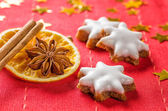 Cinnamon biscuits and christmassy spices — Stock Photo