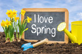 Sign in the flower bed with the text I love spring — Stockfoto