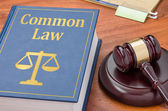 A law book with a gavel - Common law — Stock Photo