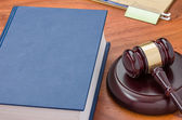 A law book with a gavel — Stock Photo