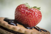 Strawberry and biscuits — Stock Photo