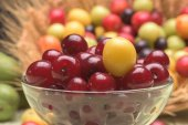 Sour cherry and cherry plums — Stock Photo