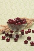 Sour cherry in a glass bowl — Stock Photo