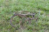 Antique or retro oxidized bicycle on the grass — Photo