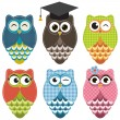 Set with owls — Stock Vector #67418391