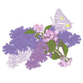 Big Butterfly Sitting Down on Blooming Lilac and Apple Tree Twig — Stock Vector