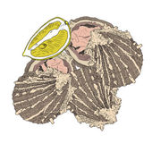 Sea food - opened oysters with lemon. Hand drawn colorful vector — Stock Photo