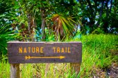 Wooden sign in nature — Stock Photo