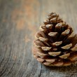 Isolated fir cone with wooden background — Stock Photo #69760753