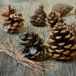 Isolated fir cones with wooden background — Stock Photo #69993201
