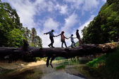 Family walking on the tree in a dangerous manner — Stock Photo