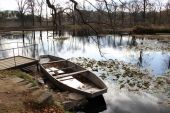 Boat and pond in the autumn forest   — Stock Photo