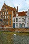 Canais de Bruges, Bélgica-cisne — Fotografia Stock