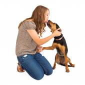 Mixed Breed Dog and Young Lady — Foto Stock
