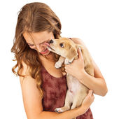 Puppy Kissing Laughing Girl — Stock Photo