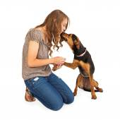 Young Woman and Mixed Breed Dog — Stock Photo