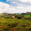 Tuscany Italy Vineyard — Stock Photo #64693269