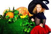 October events — Stok fotoğraf