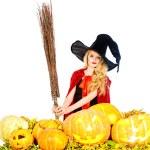 Pumpkins — Stock Photo #56233121