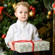 Boy and a present — Stock Photo #62089817