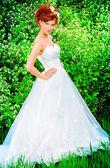 Traditional bride — Stock Photo
