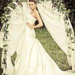 Bride portrait — Stock Photo #68057609