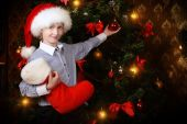 Decorate a tree — Stock Photo