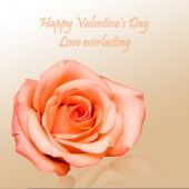 Valentine card with rose background — Stock Photo