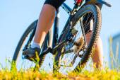 Cyclist in the park early in the morning — Stock Photo
