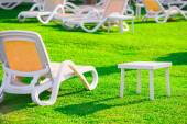 Green lawn and empty sun loungers at dawn — Stock Photo