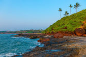 Rocky shore and coconut palms. tropical beach — Photo