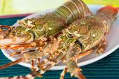 Fresh raw lobsters on the table in a plate — Stock fotografie