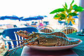 Large lobsters on a plate in a cafe on the beach — Stock fotografie