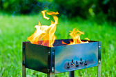Burning flame fire in the brazier on the nature — Stock Photo