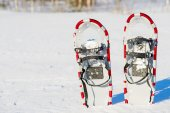 Snowshoes are standing upright in the snow — Stock Photo