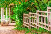 Beautiful landscape in autumn empty park — Stock Photo