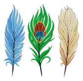 Ensemble de plumes d'oiseaux — Vecteur