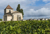 Church, Graves and Vinyard of Francs and Tayac — Stockfoto