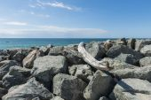 Ocean with rocks and cano — Stock Photo