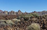 Lava Field with El Teide — Stock Photo