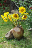 Magnificent bouquet of vivid sunflowers in antique clay pot outdoors near a rock on green grass. Clay flowerpot with bright yellow fresh sunflowers in garden. Garden arrangement with rocks and flowers — Stock Photo