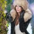 Portrait of young beautiful woman, outdoor shot in winter scenery. Sensual brunette girl with coat and fur cap posing in a park covered with snow. Fashionable female in a cold day. — Photo #54194585