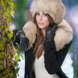Portrait of young beautiful woman, outdoor shot in winter scenery. Sensual brunette girl with coat and fur cap posing in a park covered with snow. Fashionable female in a cold day. — Stockfoto #54194587