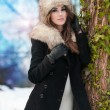 Portrait of young beautiful woman, outdoor shot in winter scenery. Sensual brunette girl with coat and fur cap posing in a park covered with snow. Fashionable female in a cold day. — Stok fotoğraf #54194591