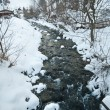 View of frozen river countryside. Brook in snowy landscape. Romanian small river in winter scenery, Romania, Moeciu. Wild brook in winter season. — Stock Photo #61919825